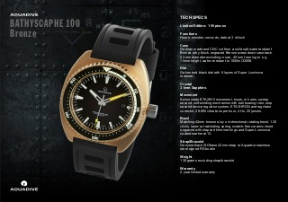 Watch_Guide_100_Bronze