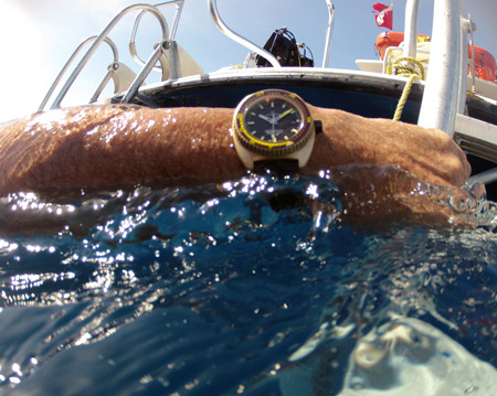 Aqua Dive Watch